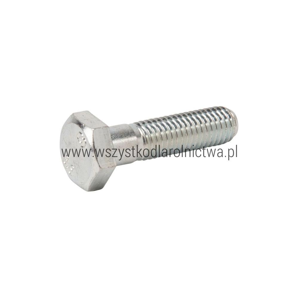 AGW00015 Śruba z łbem sześciokątnym