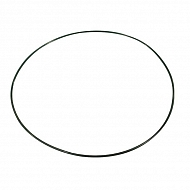 12100389 Pierścień samouszczelniający