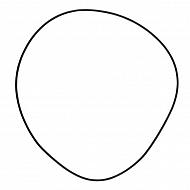 12100092 Pierścień samouszczelniający 126,72x1,78 mm