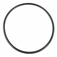G11052 Pierścień samouszczelniający filtra 319093 174,6x6,99 mm