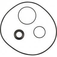 002220227 Części zamienne do pomp wody DAB, Jet 151/251 pierścień