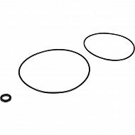 R00004187 Pierścień uszczelniający do pompy DAB Jet82 zestaw