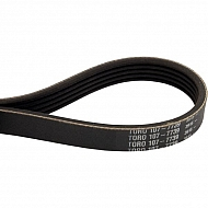 1077739 +Belt-Poly V