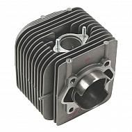 E10909ASM Cylinder silnika AS-Motor
