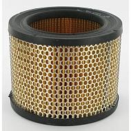 FGP011789 Filtr powietrza