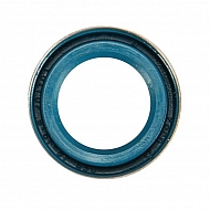 0054201 Pierścień uszczelniający wału 12x19x5(Solo)