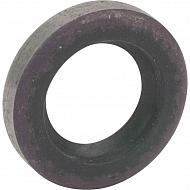 0054206 Pierścień uszczelniający wału