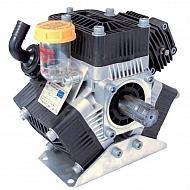 636000973VS Pompa Poly 2100-VS Bertolini