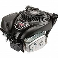 1006025025H8 Silnik, kompletny