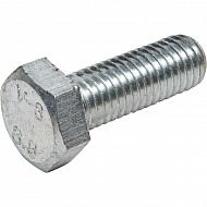 100304033 Galwanizowana śruba ustalająca