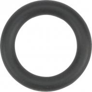 24311240100 Pierścień samouszczelniający 1a p10a