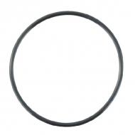 24321000750YAN Pierścień samouszczelniający