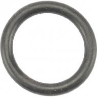 10672 Uszczelka O-ring