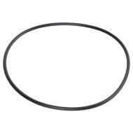 GG9250 Pierścień samouszczelniający BP 259,70 x 6,99