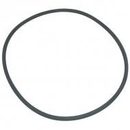 8310005Z Pierścień samouszczelniający MZ 215,30x6,99
