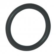 BRE37F O-ring 94,92x2,62FKM EVO90-170