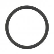 BR36N O-ring 37,69x3,53NBR EVO-50