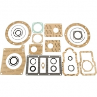 6010202008 Gasket kit Star