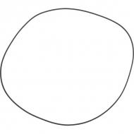 5030210078 Pierścień uszczelniający – OR 3101 257,8x2,62