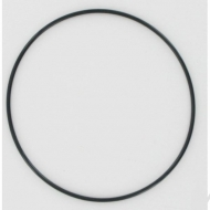 2000900004 Pierścień samouszczelniający