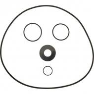 R00005202 Zestaw pierścieni samouszczelniających pompy DAB