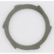 246000024R02 Pierścień uszczelniający, sprzegła FN22 (stary)